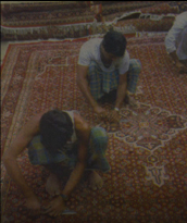 Handknotted Rugs manufacturers india